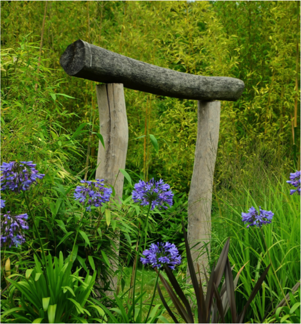 Bexar County Master Gardener Scholarship Garden Ftempo